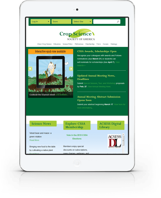 Fond du Lac, WI Web Design